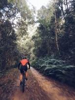Momentum Weekend Argus Knysna MTB Cycle Tour